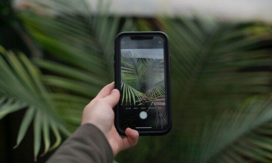 iphone 11 telefonda fotograf duzenleme nasil yapilir teknosa